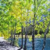 Afternoon Shadows, Quarry Lake - By Canadian Artist Wendy R Walker