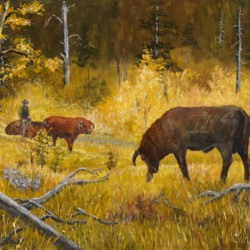 Fall Gathering Of The Bull by Western, ,