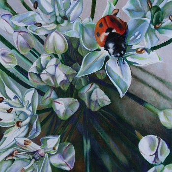 Ladybug on Chive - By Canadian Artist Dee Poisson