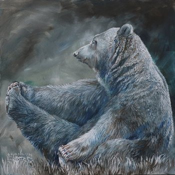 Pensive Grizzly - By Canadian Artist Shannon Ford