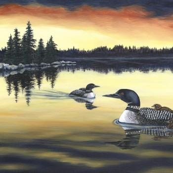 Evening Loons - By Canadian Artist Shirley Kinneberg